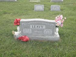 Sylvia Mary <I>Fawcett</I> Leavy