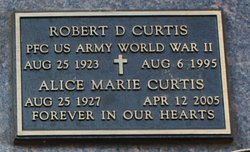 Robert D Curtis