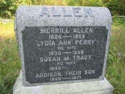 Lydia Ann <I>Perry</I> Allen