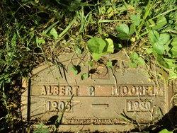Albert P Mooney
