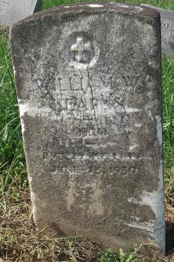 William W. Kearns