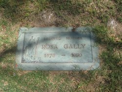 Rosa <I>Kovacs</I> Gally