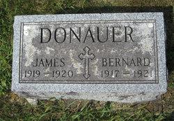 Bernard Donauer