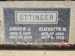 Andrew J Ottinger