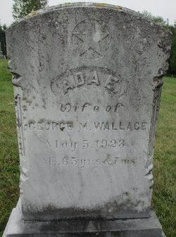 Ada E Wallace