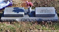Sallie Ann <I>Turner</I> Gwynn