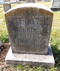 Katharine <I>Jenkins</I> Meehan