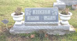 Andrew C Bucheit