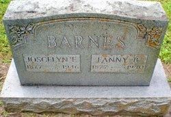 Joscelyn E. Barnes