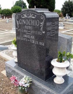 Mary Ginochio