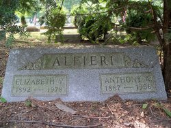 Anthony A Alfieri