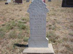 Hector McNeill