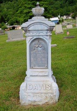 Rachel E. <I>Nichol</I> Davis