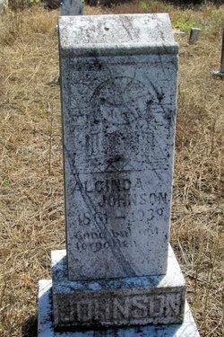 Alcinda <I>Pollard</I> Johnson
