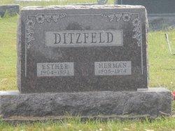 Herman John Ditzfeld
