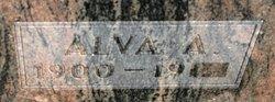Dr Alva A Boston