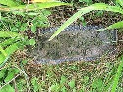 Richard E Cotton