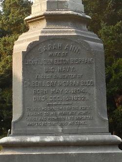Sarah Ann <I>Budd</I> Bispham
