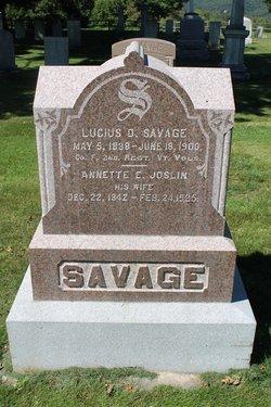 Lucius D Savage