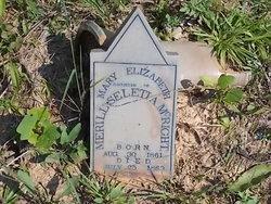 Mary Elizabeth McRight