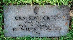 Graysen Forest Walker