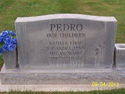 Brett Harrison Pedro