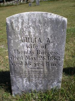 Julia Ann <I>Swift</I> Burgess