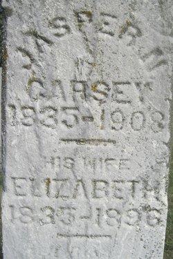 Elizabeth Carsey