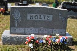 Clara Louise <I>Clements</I> Holtz