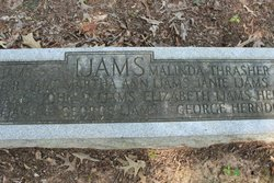 Martha Ann <I>Cunningham</I> Ijams