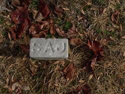 Sallie A Johnson