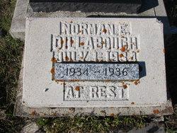 Norman E. Dillabough