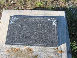 Walter Nelson