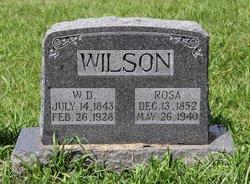 Rosa Ann <I>Chalfin</I> Wilson