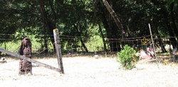 Jewett Valley Cemetery