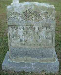 Sarah Jane <I>Hales</I> Hall