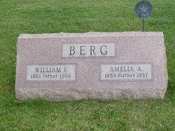 Amelia A Berg