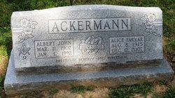 Albert John Ackermann