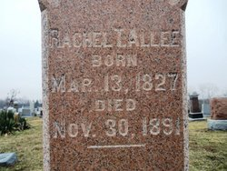 Rachel <I>Borders</I> Allee