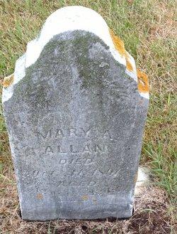 Mary A Allan