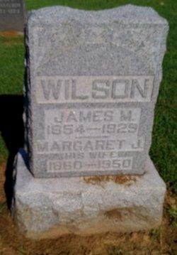 Margaret Jane <I>Alexander</I> Wilson