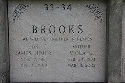 Viola Lucille <I>Heyer</I> Brooks