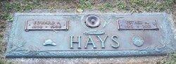 Edward A Hays