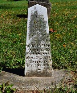 William H Wells