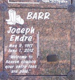 "Joseph Endre ""Joe"" Barr"