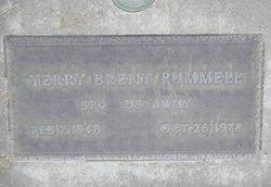 Terry Brent Pummell