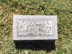 Charles A. Bishop