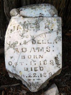 James A. Adams