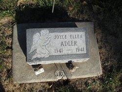 Joyce Ellen Adler