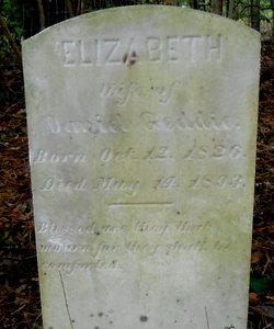 Elizabeth <I>McPhail</I> Geddie